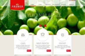 Katalog produktów strona głowna
