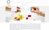 twdconsulting cms